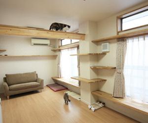 猫や犬などペットが遊ぶためのリフォーム工事。